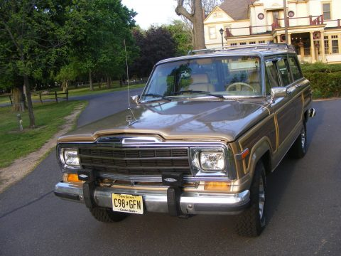 new engine 1989 Jeep Wagoneer offroad for sale