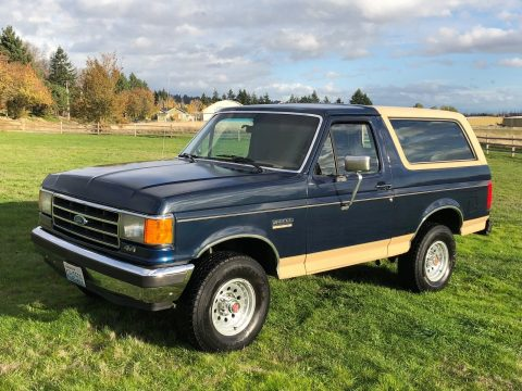 good condition 1991 Ford Bronco Eddie Bauer offroad for sale